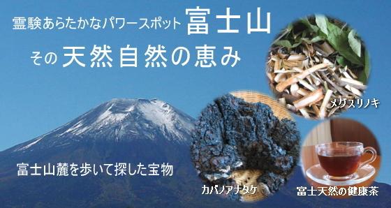 カバノアナタケ・メグスリノキ・健康茶