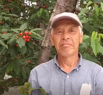 さくらんぼ農園主西野健一