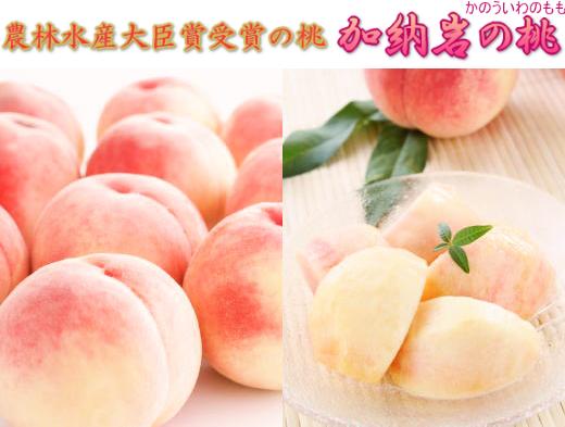 農林水産大臣賞/加納岩の桃