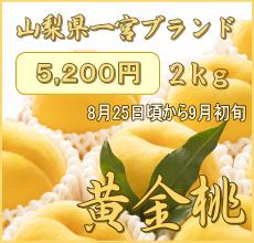 黄金桃(ゴールデンピーチ)2kg