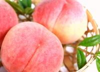 山梨の桃専門農家の桃2kg