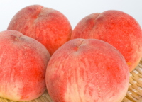 桃の品種 なつっこ 2kg